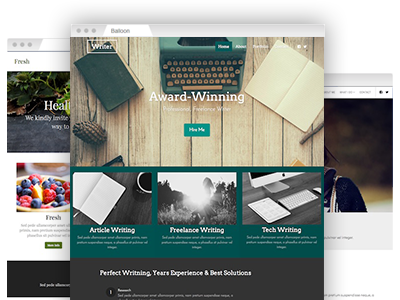 A variety of easy–to–redesign website themes